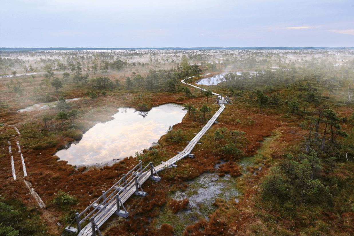 Кемерские болота